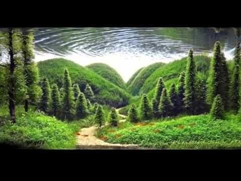 [UNIK] Seni Akuarium di Alam Bebas Lewat Aquascape
