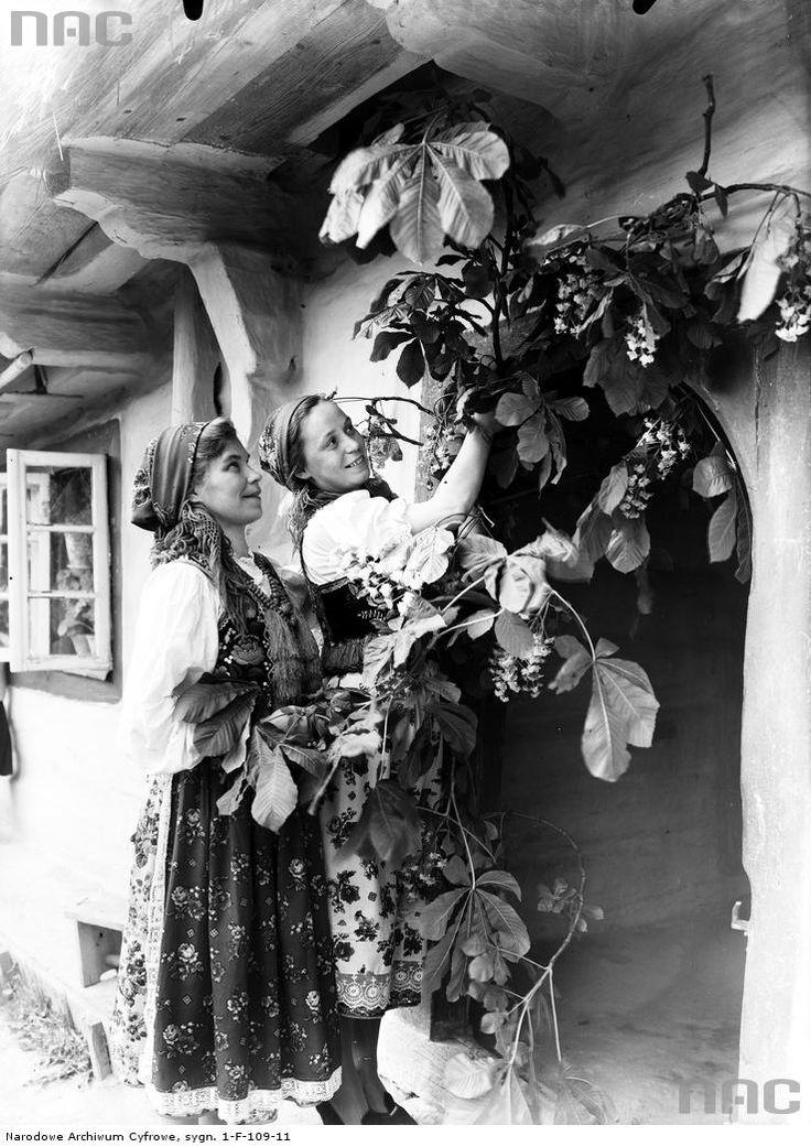 Młode kobiety w strojach regionalnych przyozdabiają dom.Data wydarzenia: 1930-05 Miejsce: Bronowice k. Krakowa