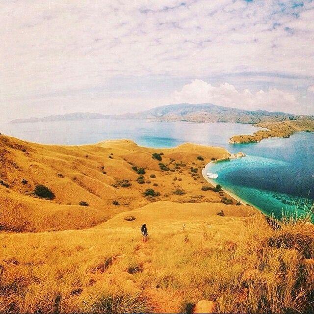 Take me here . Photo by @bejotekfa taken at Gili Laba,Labuan Bajo - Flores ➖➖➖➖➖➖➖➖➖➖➖➖➖➖➖➖ Kumpulan video traveling Check  @travellervideo @travellervideo @travellervideo ➖ ➖➖➖➖➖➖➖➖➖➖➖➖➖➖➖ Baca dan submit artikel tentang Traveling di : tripgue.com