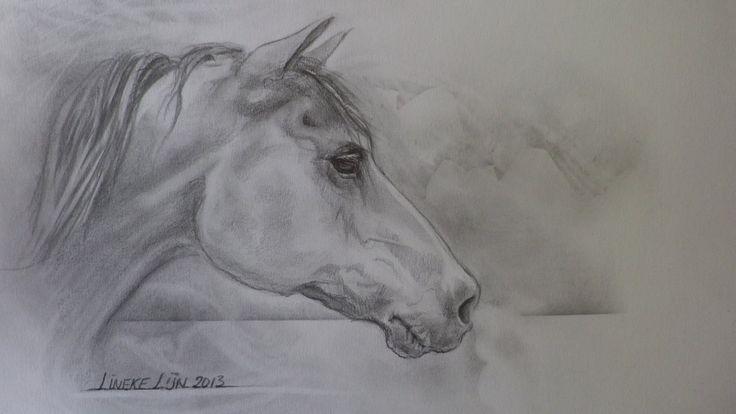25 Beste Idee 235 N Over Paard Tekeningen Op Pinterest