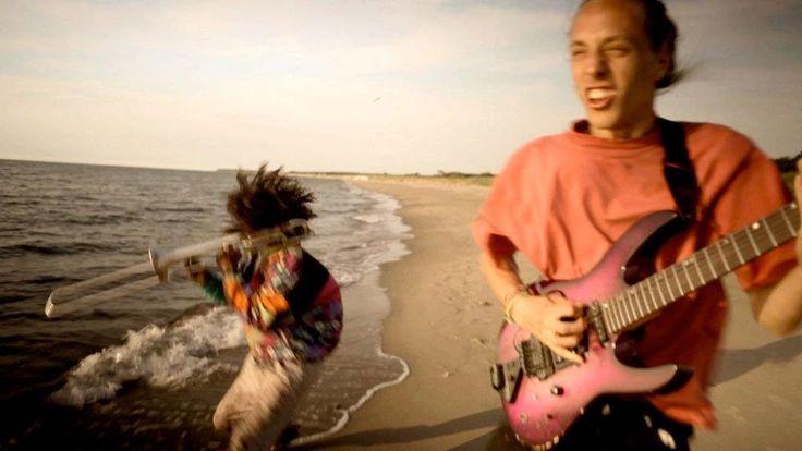"Video ""Guaia Guaia"" | Einsfestival | ARD Mediathek"