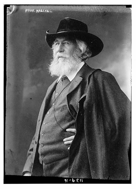 """Ernst Haeckel. (1834-1919).  Médico, zoólogo, evolucionista, padre de la ecología. from """"The Clarence Darrow Digital Collection"""""""