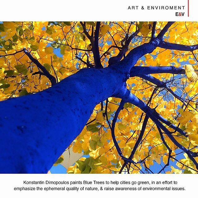 ART & ENVIROMENT -  Konstantin Dimopoulos is an egyptian-born new zealand-based artist that is using a non-toxic non-permanent pigment to paint Blue Trees moving out of the art institutions and galleries to outdoor spaces among nature. The project seeks to express a message of social consciousness and ecological awareness particularly with regard to ecocide and the deliberate destruction of forests. The artist visited West Vancouver in late 2015 and with the help of over 350 participants…