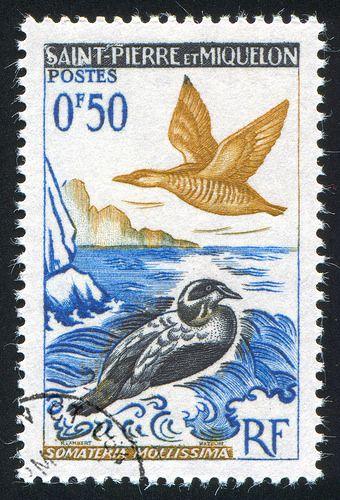 16 best Timbres-Oiseaux-France images on Pinterest | Birds, Door ...