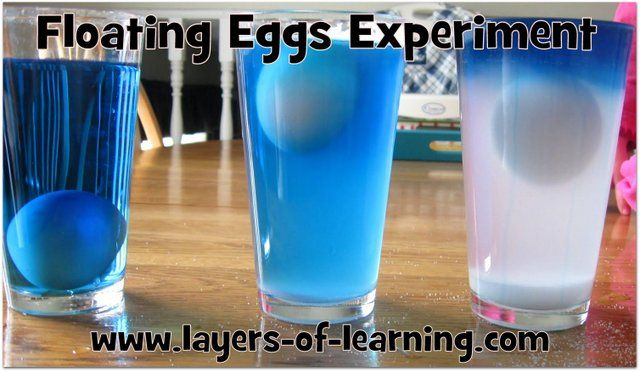 Try this simple floating eggs experiment to see how density can make an egg float at different levels.