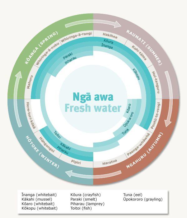 Māori harvesting seasons – Te mahi kai – food production economics – Te Ara Encyclopedia of New Zealand