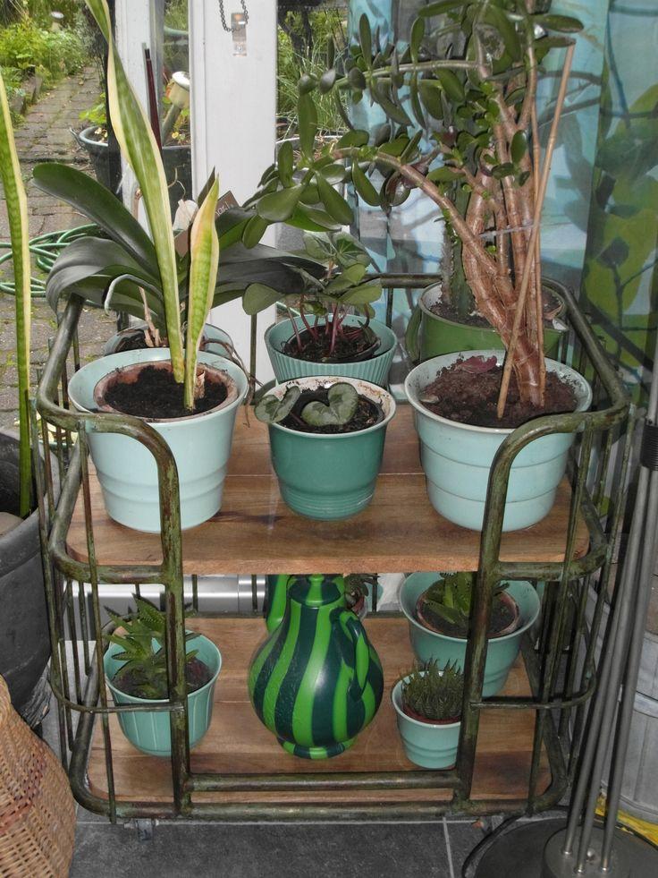 trolley voor planten:Cornelia