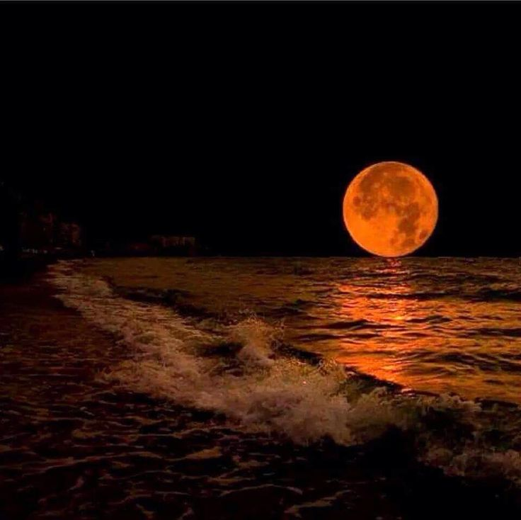 Super Moon Photo by Cathy Croon