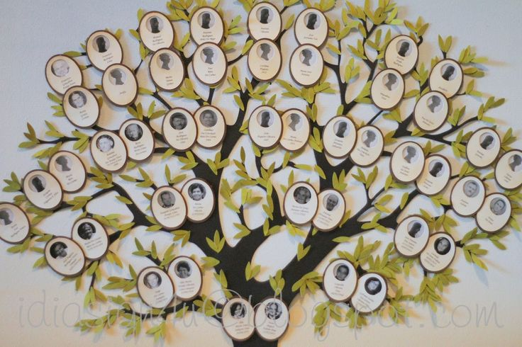 Family Tree Ideas For High School Project Google Search