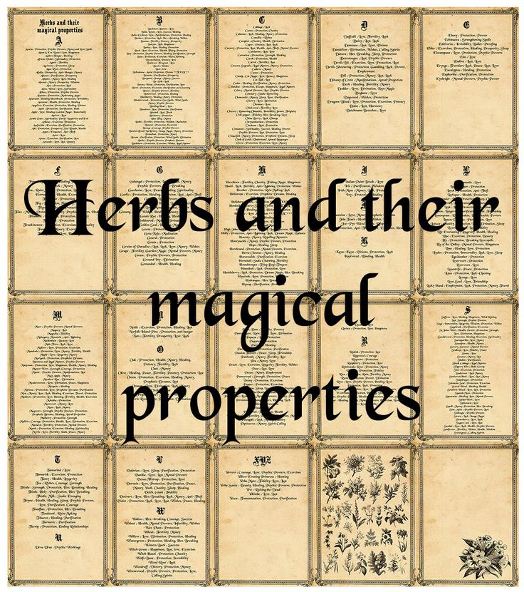 Book of shadows, Herbs and their magical properties, 20 pages download by CreativeWitchByErika on Etsy https://www.etsy.com/uk/listing/289356329/book-of-shadows-herbs-and-their-magical