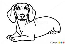 how to draw a sausage dog