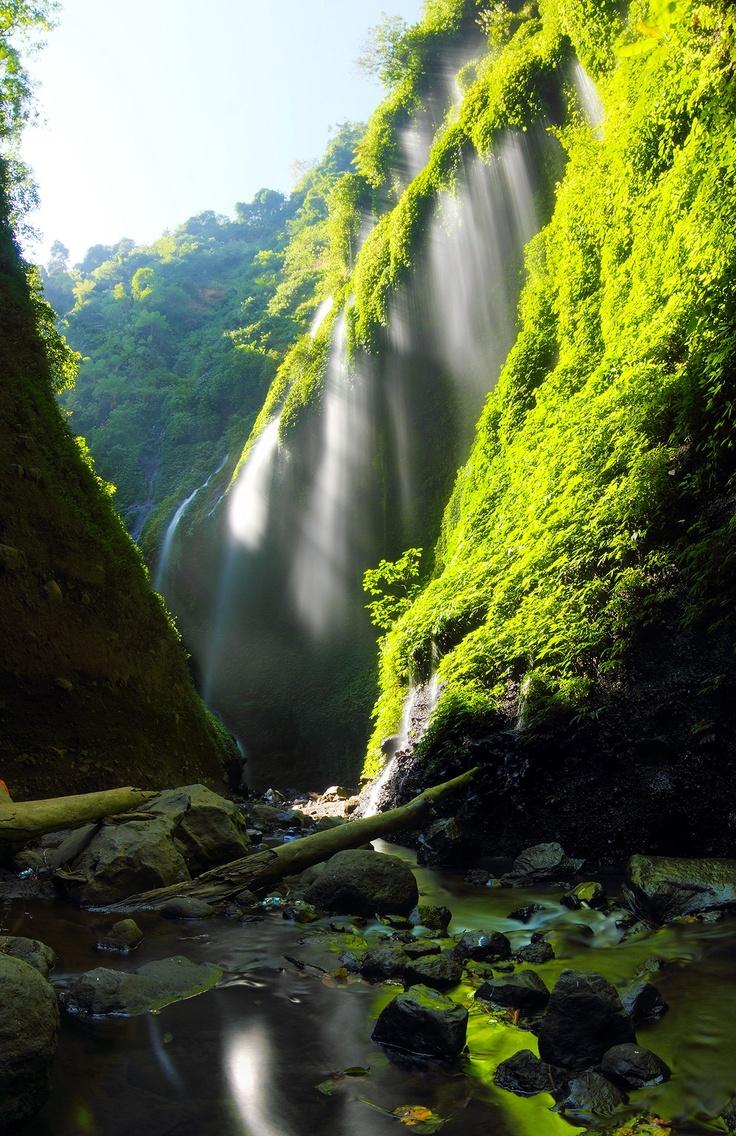 Madakaripura Waterfall, East Java Wonderful Waterfalls