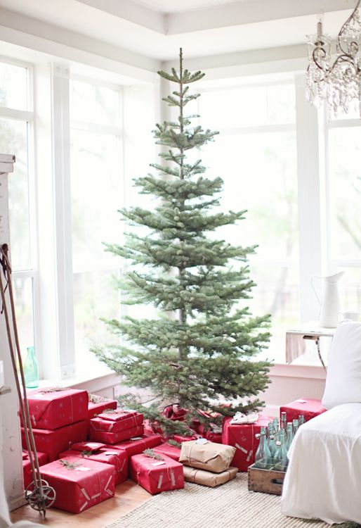 You don't always need to trim the tree. Sometimes they look beautiful all on their own. Try this simple Christmas tree and avoid the tangles of lights and the hanging of ornaments. And have the time to enjoy the Christmas season.