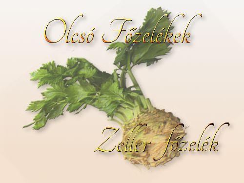 http://megoldaskapu.hu/olcso-fozelekek/zeller-fozelek Zeller főzelék