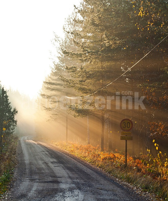 God rays at an early evening sunset  © Arno Enzerink / www.stockphotography.nu All rights reserved.