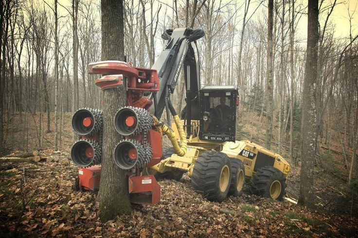 Caterpillar Equipment Logging and Forestry. Let's get to work!