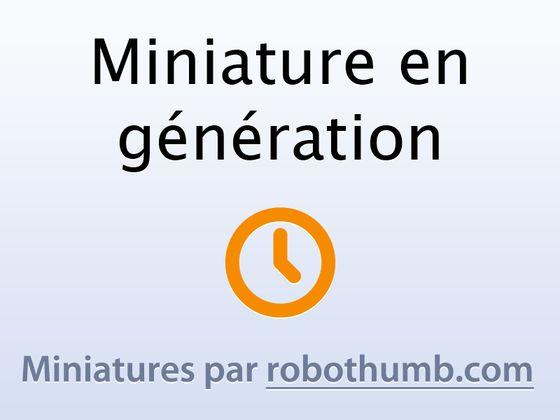 LookMoiCa.fr , l'actualité par des Pinguinalités