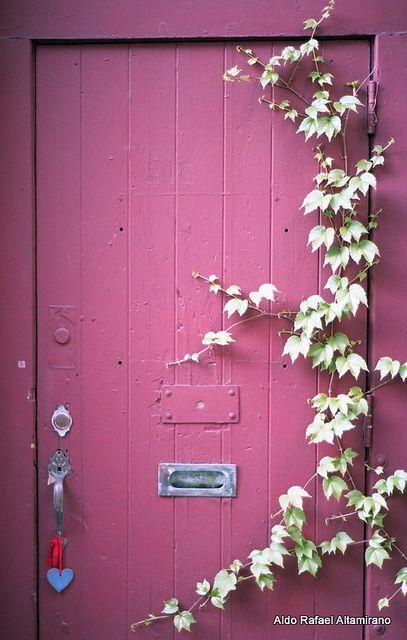 I want a door like this one    Door by Rafakoy, via Flickr