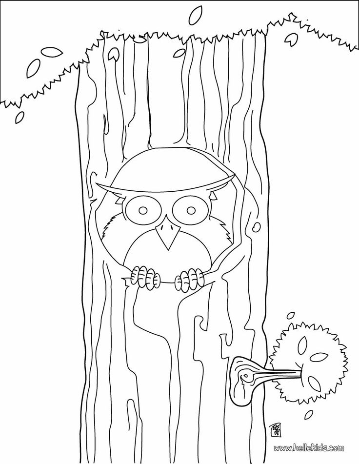 208 Best Images About Coloring Pages For Kids On Pinterest
