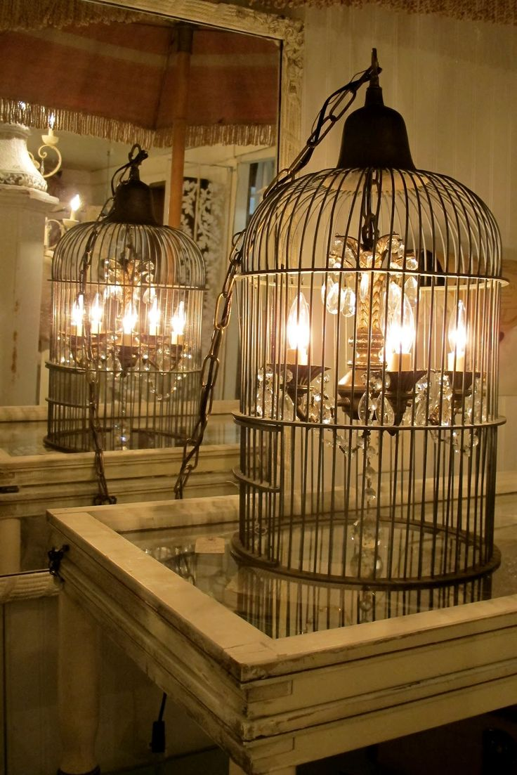 bird cage lighting fixture - could be cool as a center piece on a dining room table, or would it be too Gothic?