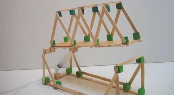 Hydraulic Arm With Popsicle Sticks : Popsicle sticks hydraulic bridge designs google search