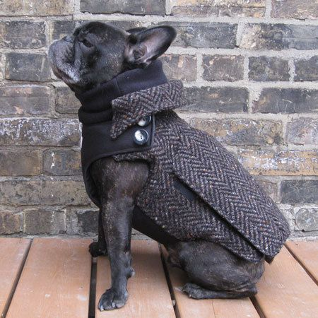 Ok, so although I'm not a fan of dogs wearing clothes I think I could make an exception for this coat merely bc I find it hysterical. The City Coat  Adult Boys French Bulldog/Pug by BabiesAndBeasts, $149.99
