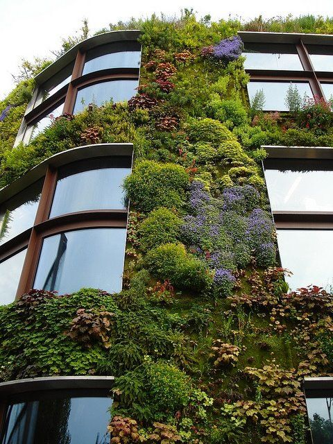 garden wallLiving Walls, Gardens Design Ideas, Green Wall, Green Buildings, Gardens Wall, Vertical Gardens, Architecture, Greenwall, Wall Gardens