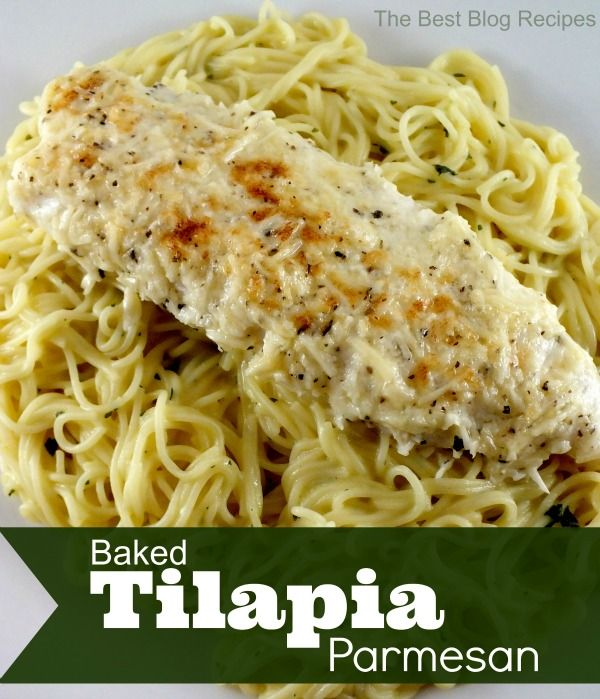 Baked TIlapia Parmesan from The Best Blog Recipes | 7 Easy Tilapia Recipes that even kids will like