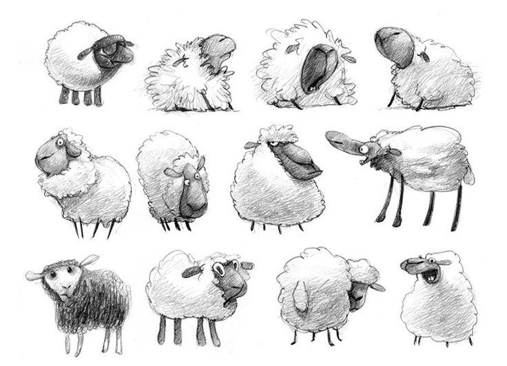 рисунки овечек карандашом необходимости