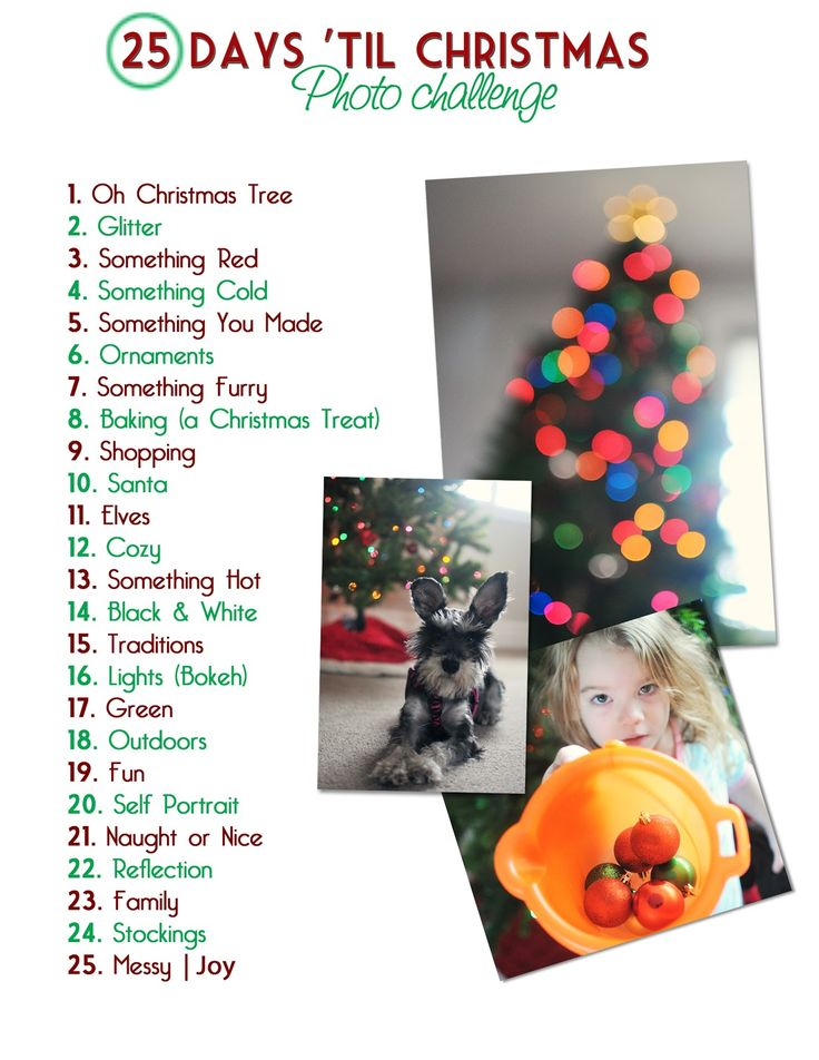 25 Days 'Til Christmas Photo Challenge! Adeline and I are doing something like this, she is taking the pictures. Seeing these pictures from her view is great.