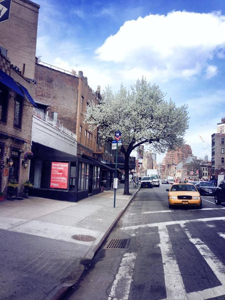 Greenwich Village, April.  Photographed by Margrethe Tang