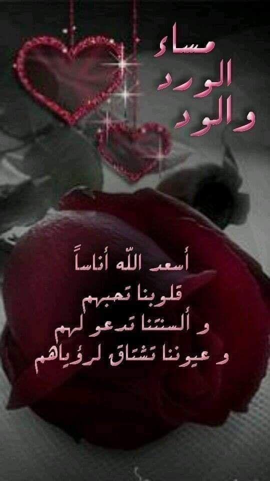 مساءالورد مساء الحب مساء الجمال مساء الوفاء مساءالأحساس مساء الفل مساء النور Funny Arabic Quotes Love Quotes For Him Good Evening