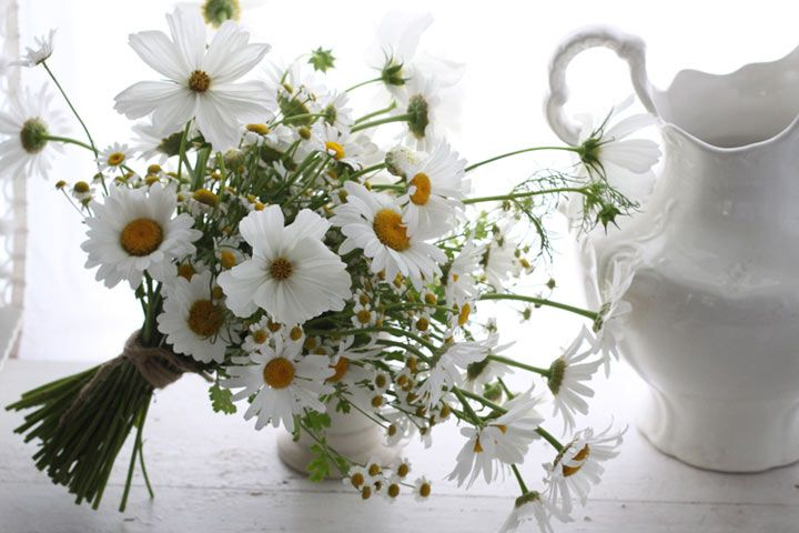 White bridesmaids bouquets and then bride's bouquet with some color to stand out?