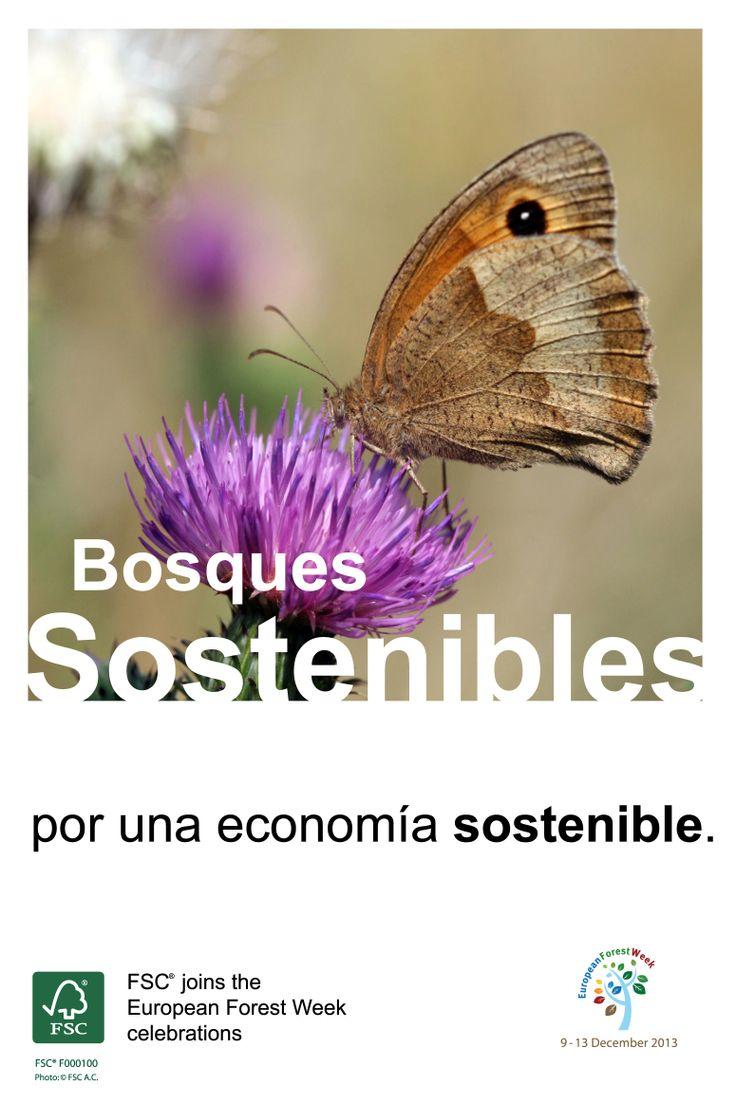Bosques Sostenibles / por una economía sostenible.