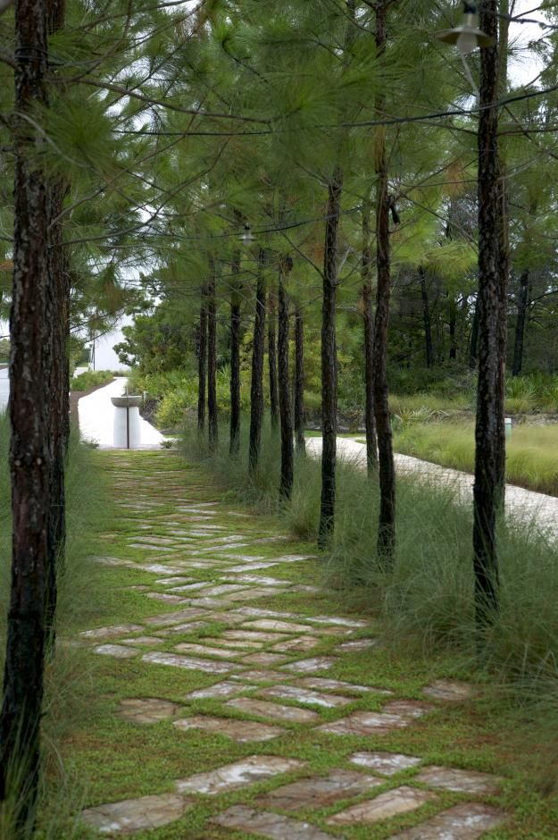 I could see this path... even in my front yard... but especially my back yard