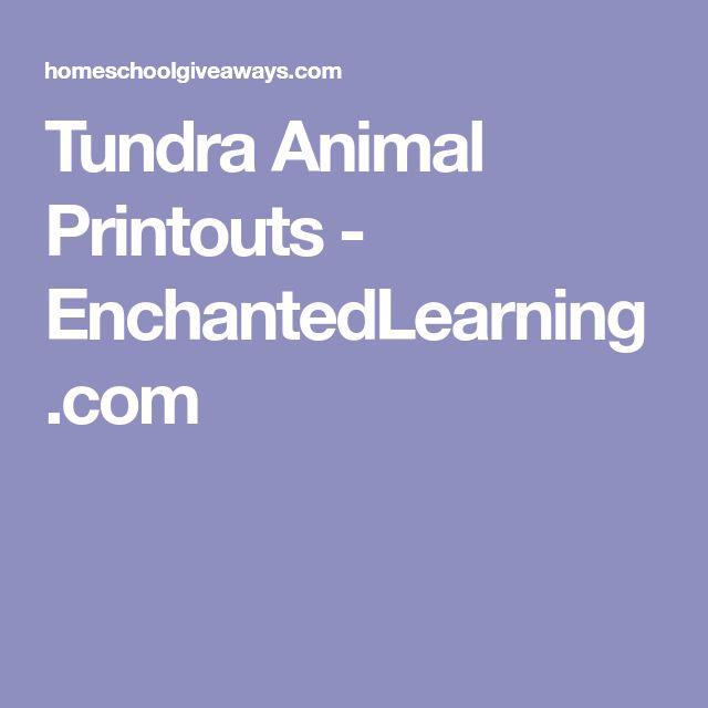 Tundra Animal Printouts - EnchantedLearning.com
