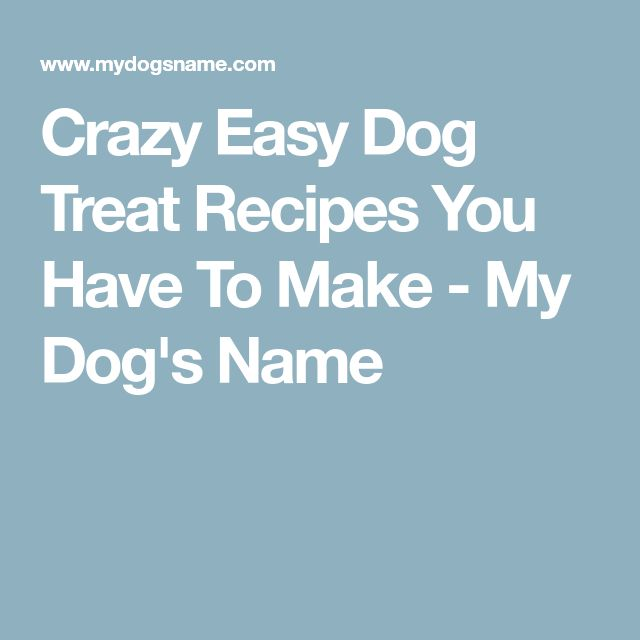 Crazy Easy Dog Treat Recipes You Have To Make - My Dog's Name