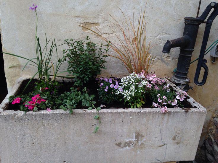 Plantations de printemps dans ancien l'avoir