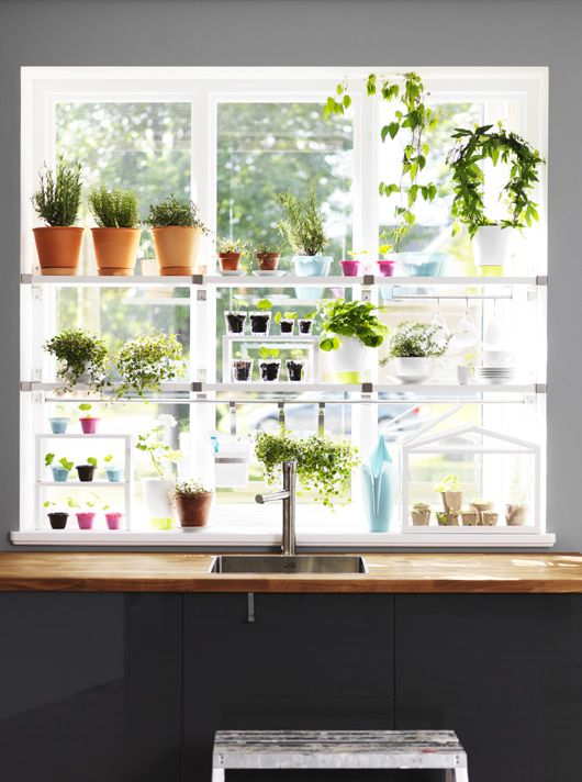 Window shelves Digging into Spring with Ikea 2013 #gardening #Spring #kitchen