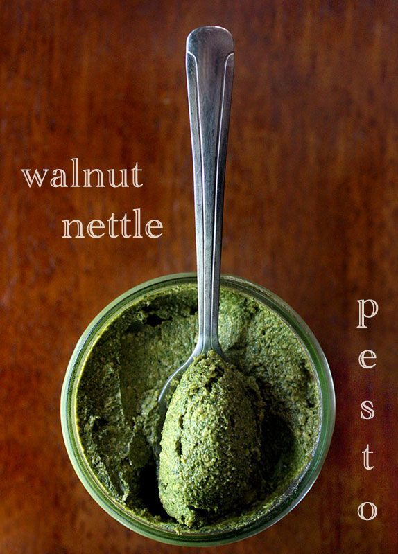 Walnut Nettle Pesto recipe—time to get wildcrafting. Oh yum!