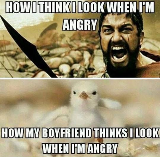 How I think I look when angry – meme
