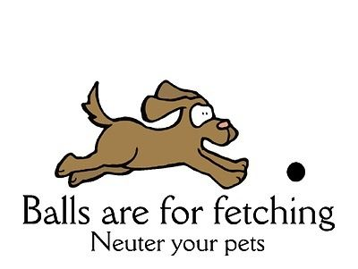 Spay and neuter your pets and save lives!!