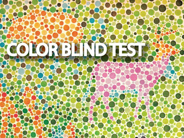 Captivating Color Blind People Arenu0027t As Easily Fooled By Camouflage As Those Who Can  See A Full Range Of Color