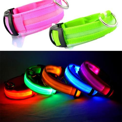 A great idea for a dog collar for when you are walking your dog at night to increase visibility of both you and your dog.