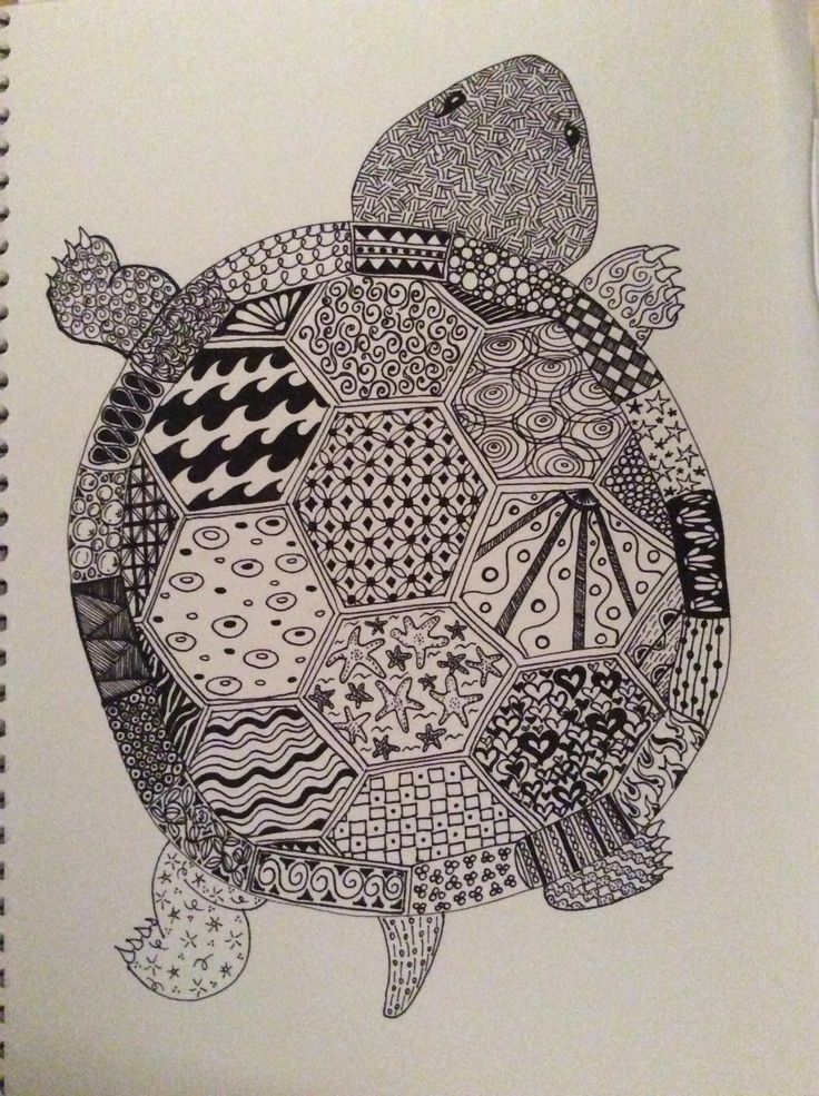 I pinned this cute turtle (an outline) earlier- this is what I had planned for the little guy. Nice to spend some time doing something I've wanted to do for a while.