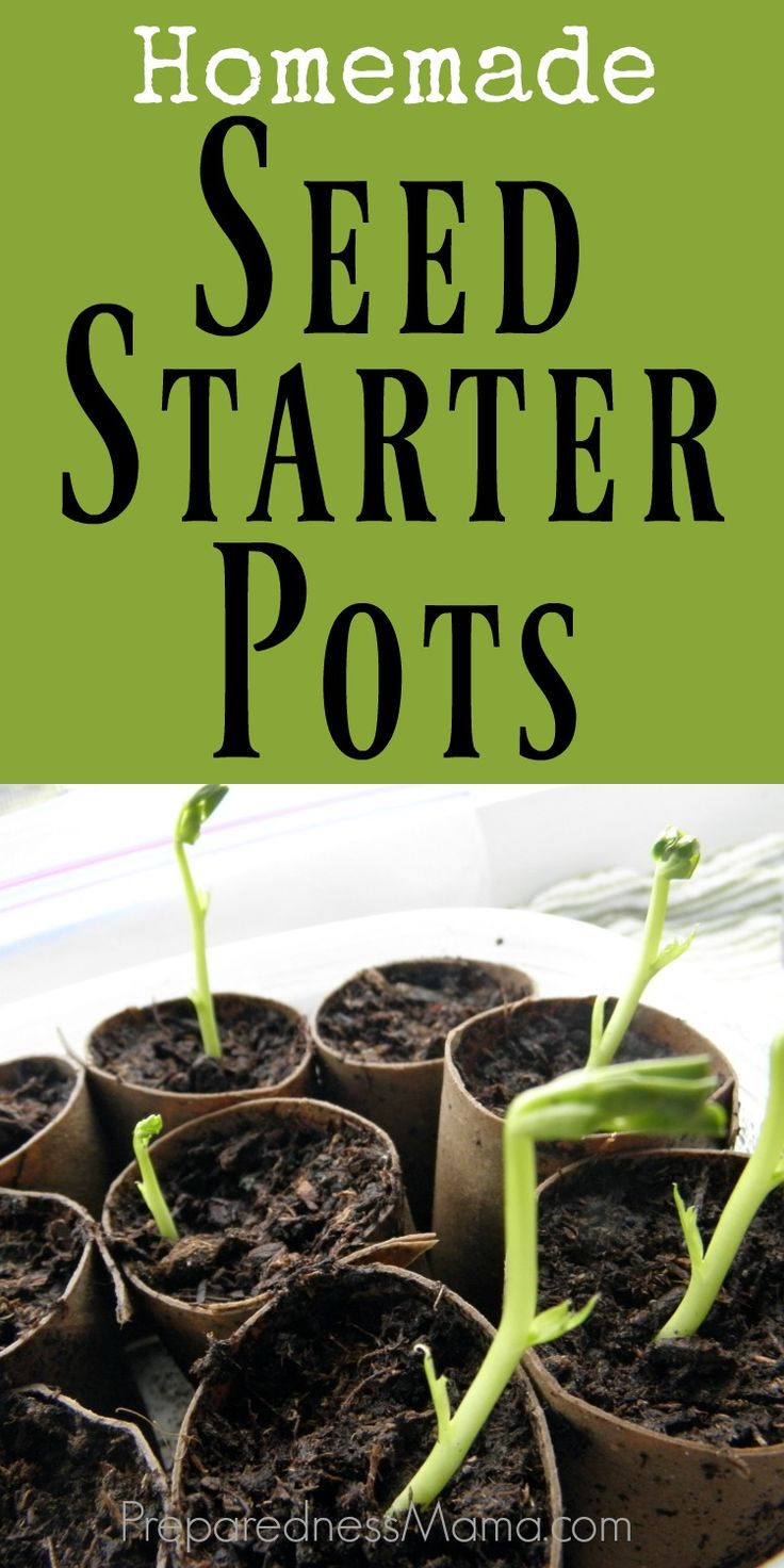 7 Homemade seed starter pots | PreparednessMama.  Empty toilet or paper towel rolls (directions below) Newspaper Egg shells Egg cartons Dixie cups, coffee cups (any kind of cup made of paper) Cereal boxes (or other light cardboard) Shredded paper