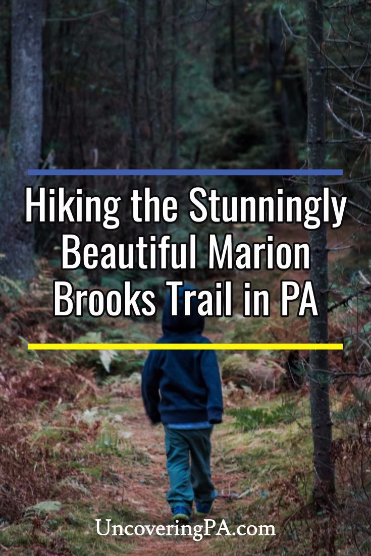 Hiking in the Marion Brooks Natural Area