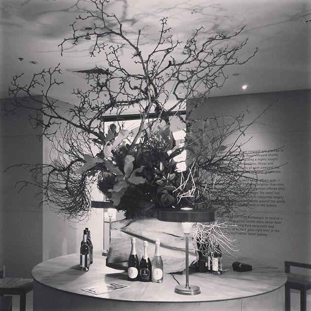 Installation 'tree of life' Pop up wine bar in collaboration with the wonderful @handelsmannkhaw @intercontinentalsydney #bimbadgenestate