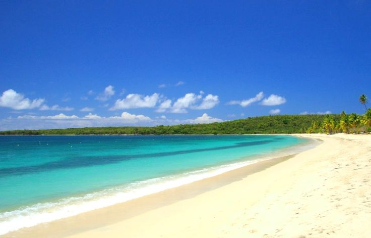 #Caribbean island: Housesitter(s), single or couple, needed for private home on a Caribbean island. www.caretaker.org