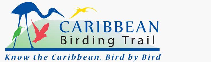 Caribbean Birding Trail